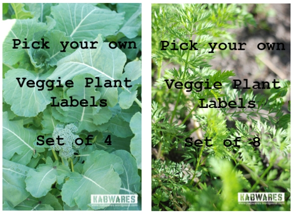 pick your own veggies